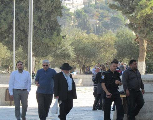 6000 إسرائيلي  يحاولون الانتحار سنوياً
