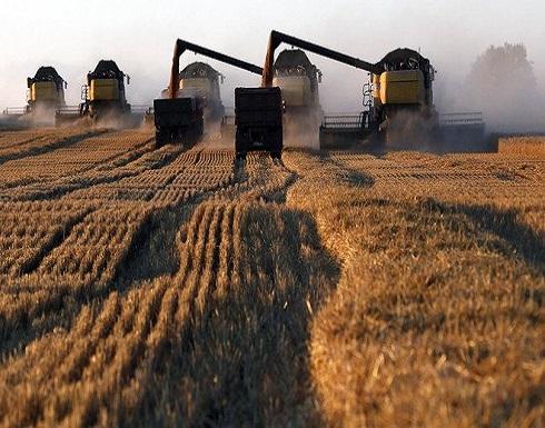 القمح قد يكون الفائز الأكبر من الاتفاق التجاري بين الصين وأمريكا