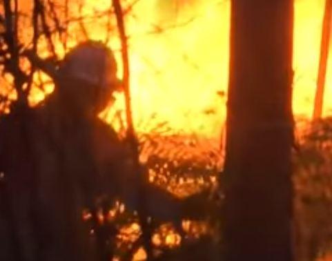 شاهد ..  حرائق غابات هائلة بالبرتغال توقع عشرات القتلى والجرحى