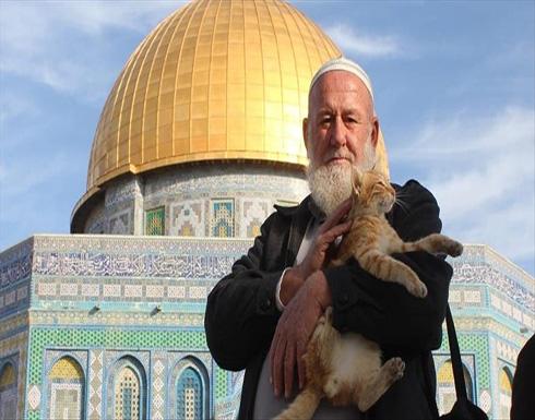 """""""أبو هريرات"""".. رحيل هادئ يُؤلم القطط والطيور في باحات الأقصى"""