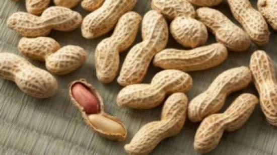 ماذا يحدث للرجل إذا أكل 30 جرام من الفول السوداني كل يوم ولمدة 2 أسابيع