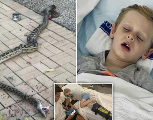 ثعبان ضخم يغرس أنيابه في ساق طفل ويسحبه بعيدًا عن المنزل.. وهكذا انتهى الهجوم الوحشي!