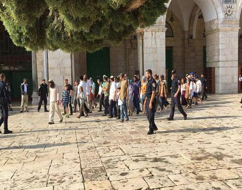 مستوطنون يقتحمون الأقصى ويؤدون طقوسا بحماية الاحتلال