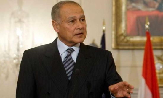 أبو الغيط يطالب الأمم المتحدة بالتدخل لوقف الانتهاكات بحق الأسرى الفلسطينيين