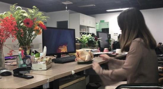 موظفة تطهو دجاجة بمقر عملها وأمام الجميع!