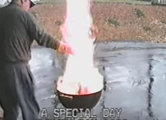 """بالفيديو.. أطرف كوارث """"الديك الرومي"""" في عيد الشكر"""
