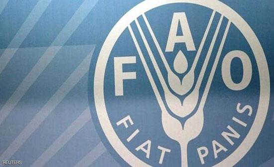 فاو: أسعار الغذاء العالمية ترتفع في فبراير