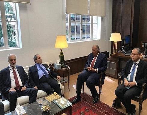 شكري يتحدث عن تفاصيل لقائه مع وزير خارجية الأسد (شاهد)