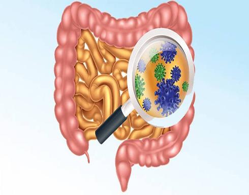 «البروبيوتيك».. بكتيريا تحمي جهازك الهضمي