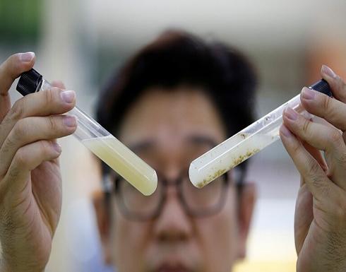 كوريا الجنوبية تخطط لإنتاج علاج لكورونا يستند إلى الأجسام المضادة