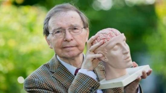 علماء: الدماغ البشري يتجدد باستمرار
