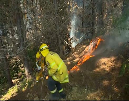 شاهد..  رجل اطفاء يحاربون حرائق الغابات في نيوزيلندا