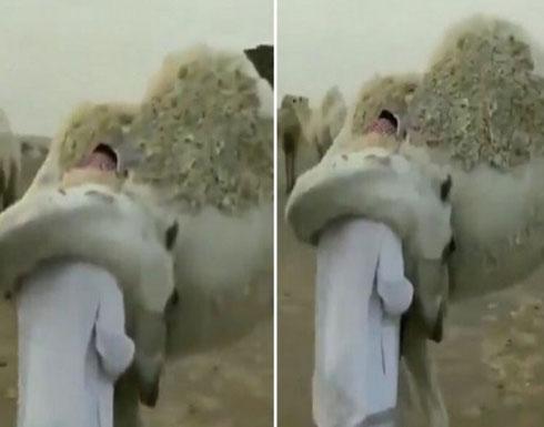 بالفيديو : بعد أكثر من عامين.. صحف هندية تتناقل مشهد ناقة وصاحبها من السعودية