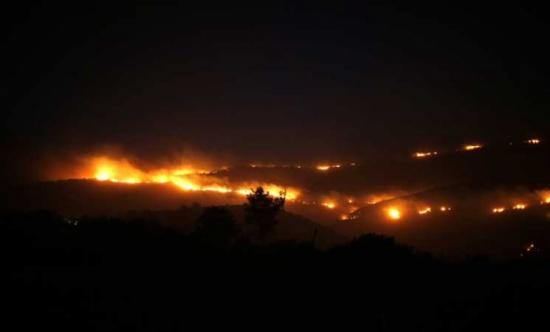 الخارجية الفلسطينية تتهم المستوطنين بإشعال الحرائق في الضفة الغربية