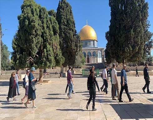عشرات المستوطنين يجددون اقتحاماتهم للمسجد الأقصى