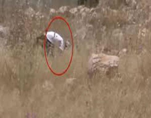 فيديو يفضح الجهة التي أحرقت حقول القمح في الضفة الغربية