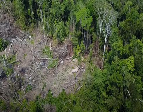 بالفيديو : اكتشاف قبيلة برازيلية تعيش بعزلة أبدية عن عالمنا