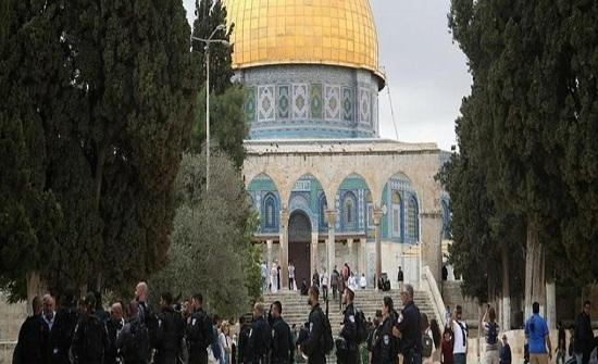 الخارجية : الإنتهاكات الإسرائيلية ضد المسجد الأقصى استفزازاً لمشاعر المسلمين
