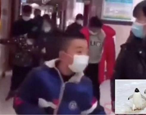 شاهد : الصين تعلق على ظهور أشخاص يسيرون كالبطريق بعد إجرائهم المسحة الشرجية