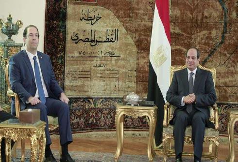 السيسي يبحث مع الشاهد الأزمة الليبية