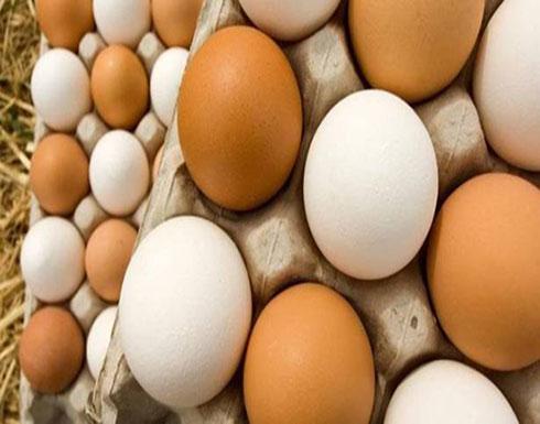 ما الفرق بين البيض البني والأبيض؟
