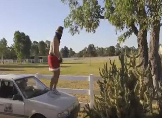 بالفيديو.. مهووس بالشهرة يُلقي بنفسه على شجرة صبار عملاقة