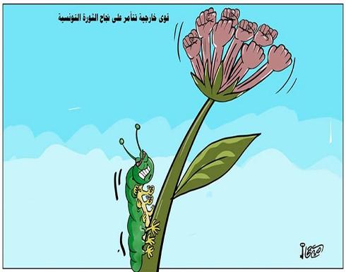 قوى خارجية تتآمر على نجاح الثورة التونسية