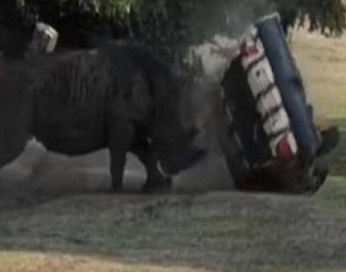 """بالفيديو..""""وحيد القرن"""" يلعب بسيارة بداخلها امرأة ويدحرجها كالكرة"""