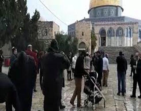 """مستوطنون يقتحمون الأقصى احتفالا بـ""""عيد الفصح"""" (شاهد)"""