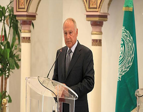 أبو الغيط يدعو إلى وقف فوري للتصعيد العسكري في جنوب غربي سوريا