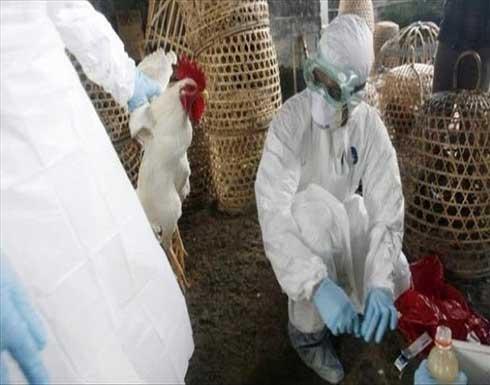 """الصين.. رصد أول إصابة بشرية بسلالة """"H10 N3"""" من إنفلونزا الطيور"""