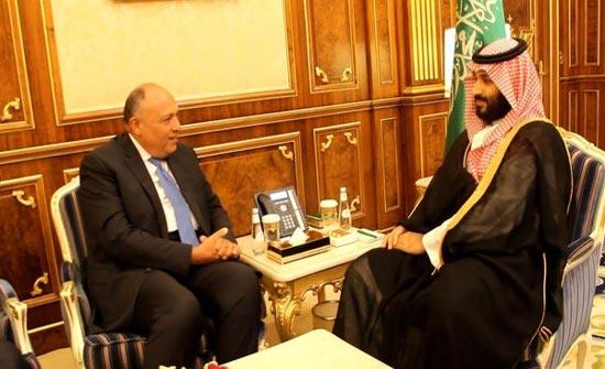 ولي العهد السعودي يبحث مع شكري تدخلات إيران في المنطقة