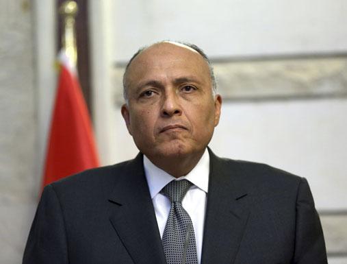 مصر: قد نلجأ لمجلس الأمن الدولي بشأن سد النهضة