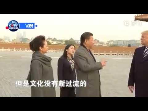 بالفيديو: ترامب للرئيس الصيني الحضارة المصرية أقدم.. والأخير يرد: نحن أحفاد التنين