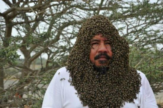 """نحال"""" سعودي يجمع أكثر من 20 ألف نحلة حول وجهه"""
