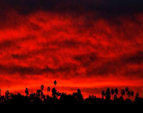 ارتفاع حصيلة ضحايا حرائق غابات كاليفورنيا إلى 66 شخصا