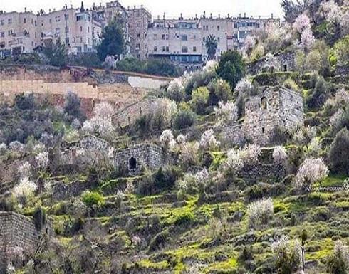 """قرية لفتا الفلسطينية.. """"للبيع"""" في مزاد إسرائيلي"""
