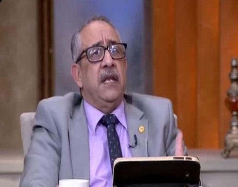 نائب مصري: البرلمان رفض مناقشة تسريبات شكري