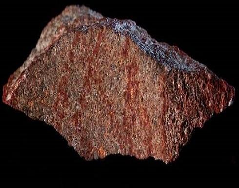 """الكشف عن أقدم """"هاشتاغ"""" في التاريخ يعود لـ73 ألف عام"""