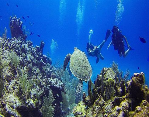صورة : اختفاء غامض لمحطة علمية.. هذا ما وجد منها في قاع البحر
