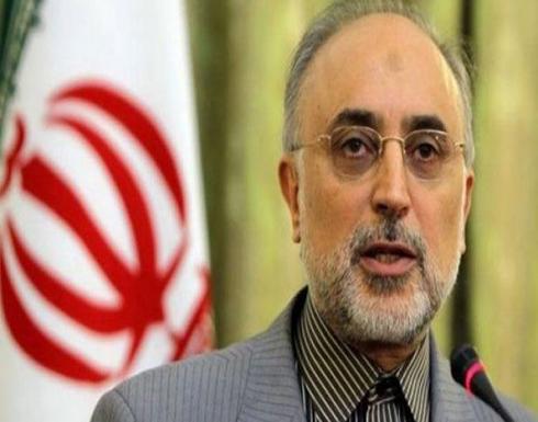 رئيس هيئة الطاقة الذرية الإيرانية: الوكالة الدولية للطاقة الذرية أبلغتنا أنها لن تطالب بتفتيش مواقع جديدة