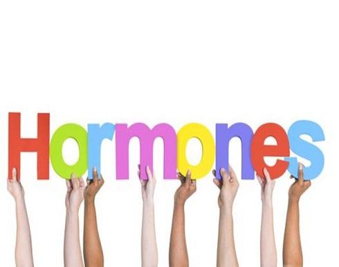 أيُّ هورمونات تؤثر في الحمية الغذائية؟