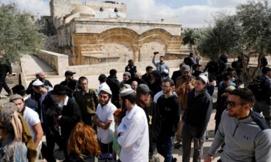 76 مستوطنا يقتحمون المسجد الأقصى