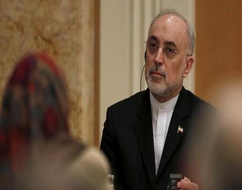 علي أكبر صالحي: برنامج إيران النووي أقوى من ذي قبل