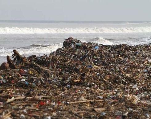 علماء يحذرون من كارثة سمية في مياه المحيطات