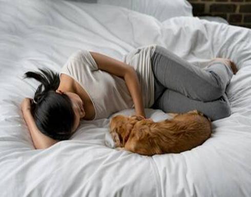 النوم بجانب الكلاب يحمل فوائد صحية مثيرة!
