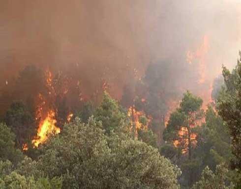 الجزائر تسيطر على 90% من حرائق ولاية خنشلة وإجلاء 24 عائلة .. بالفيديو