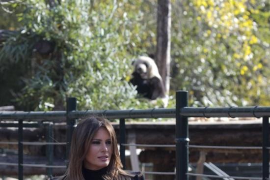 بالصور.. لقطات لـ«ميلانيا ترامب» مع الباندا تثير إعجاب نشطاء الإنترنت