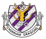 شعار جيونام دراجونز