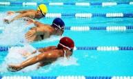 الاتحاد الدولي للسباحة